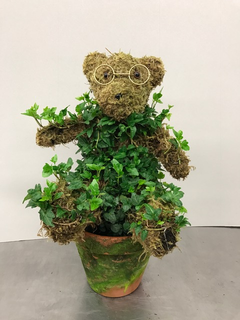 teddy_bear_(potted)